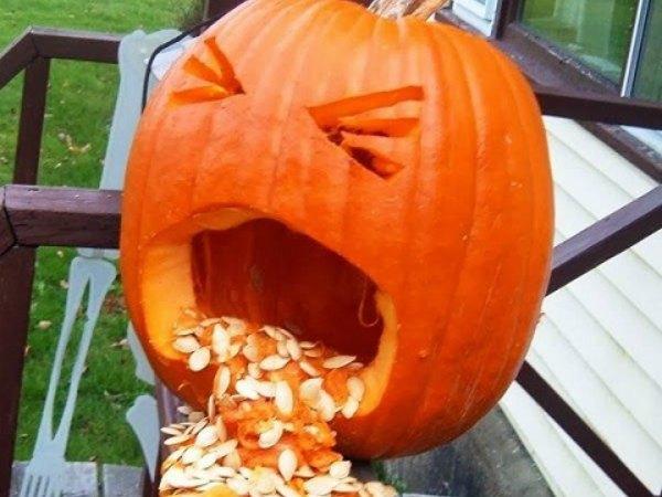 calabazas_halloween (9)